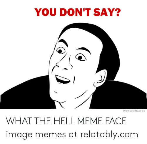 What The Hell Meme: YOU DON'T SAY?  WeKnowMemes WHAT THE HELL MEME FACE image memes at relatably.com