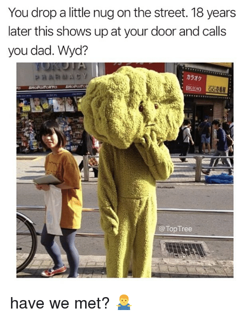 Dad, Memes, and Wyd: You drop a little nug on the street. 18 years  later this shows up at your door and calls  you dad. Wyd?  :カラオケ  LE  @Top Tree have we met? 🤷‍♂️