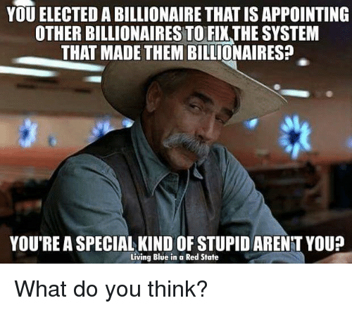 Youre A Special Kind Of Stupid: YOU ELECTED A BILLIONAIRE THATISAPPOINTING  OTHER BILLIONAIRES TO FIXTHE SYSTEM  THAT MADE THEM BILLIONAIRES?  YOU'RE A SPECIAL KIND OF STUPID ARENT YOU?  Living Blue in a Red State What do you think?