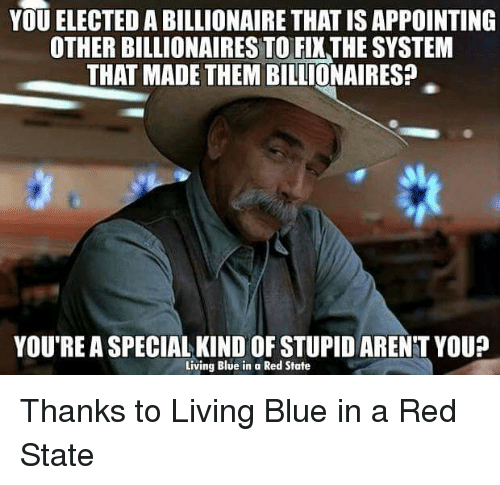 Youre A Special Kind Of Stupid: YOU ELECTED A BILLIONAIRE THATISAPPOINTING  OTHER BILLIONAIRES TO FIXTHE SYSTEM  THAT MADE THEM BILLIONAIRES?  YOU'RE A SPECIAL KIND OF STUPID ARENT YOU?  Living Blue in a Red State Thanks to Living Blue in a Red State