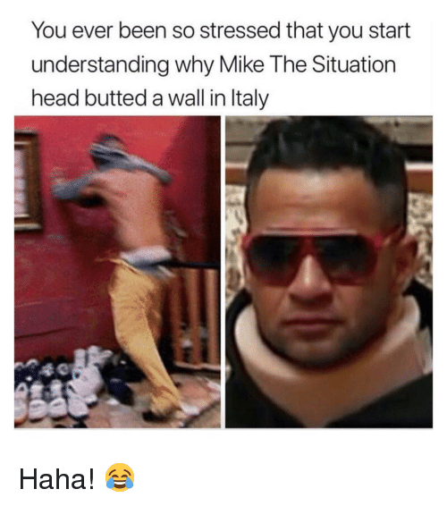 Head, Memes, and Italy: You ever been so stressed that you start  understanding why Mike The Situation  head butted a wall in Italy Haha! 😂