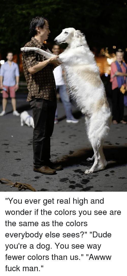 """Fuck Man: """"You ever get real high and wonder if the colors you see are the same as the colors everybody else sees?"""" """"Dude you're a dog. You see way fewer colors than us."""" """"Awww fuck man."""""""