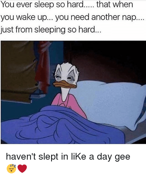 Memes, Sleeping, and Sleep: You ever sleep so hard.... that when  you wake up... you need another nap...  just from sleeping so hard haven't slept in liKe a day gee😴❤️
