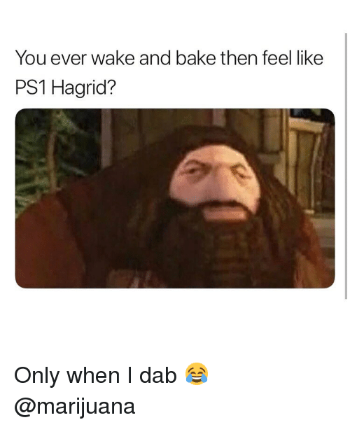 hagrid: You ever wake and bake then feel like  PS1 Hagrid? Only when I dab 😂 @marijuana