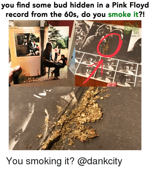 Pink Floyd: you find some bud hidden in a Pink Floyd  record from the 60s, do you smoke it?!  ANA.TV You smoking it? @dankcity