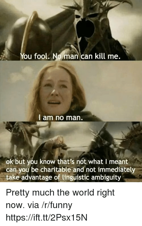 linguistic: You fool. No man can kill me.  l am no man.  ok but you know that's not what I meant  can you be charitable and not immediately  take adyantage of linguistic ambiguity Pretty much the world right now. via /r/funny https://ift.tt/2Psx15N