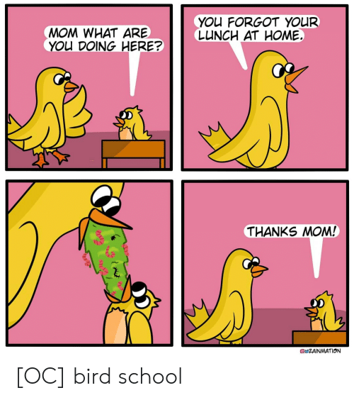 what are you doing: YOu FORGOT YOUR  LUNCH AT HOME  MOM WHAT ARE  YOU DOING HERE?  THANKS MOM!  ZAINMATION [OC] bird school