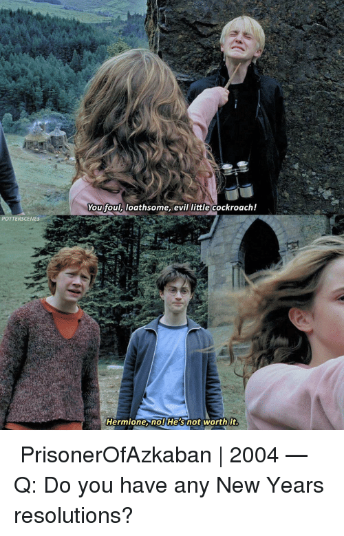 cockroach: You foul, loathsome, evil little cockroach!  POTTERSCENES  Hermione. nol He's not worth it ➙ PrisonerOfAzkaban | 2004 — Q: Do you have any New Years resolutions?