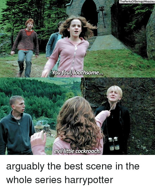 the best scene: You foul loathsome...  evil little cockroach.  The PerksOfBeingaWeasley arguably the best scene in the whole series harrypotter