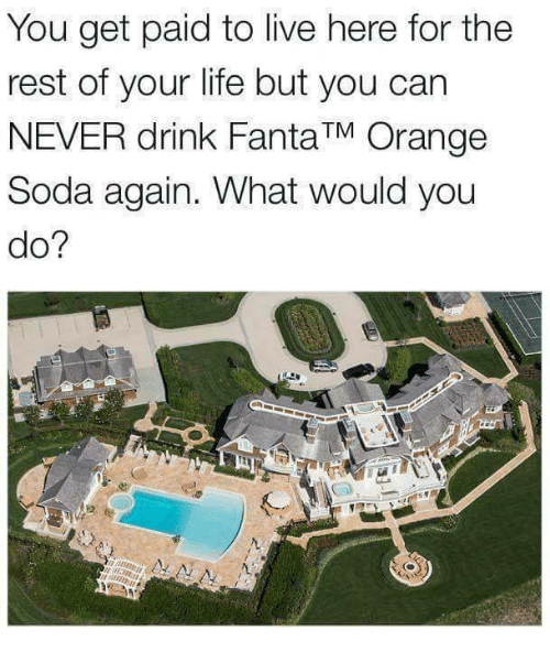 Life, Memes, and Soda: You get paid to live here for the  rest of your life but you can  NEVER drink FantaTM Orange  Soda again. What would you  do?