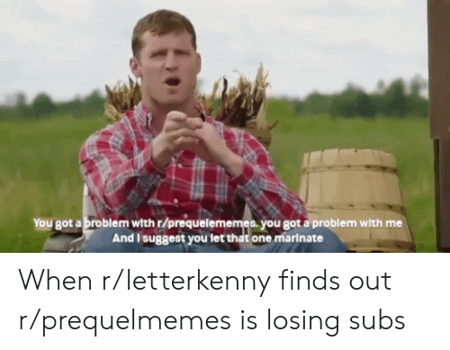 marinate: You got a problem with r/prequelememes. you got a problem with me  And l'suggest you let that one marinate When r/letterkenny finds out r/prequelmemes is losing subs
