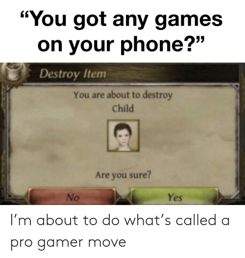 """You Sure: """"You got any games  on your phone?""""  Destroy Item  You are about to destroy  Child  Are you sure?  No  Yes I'm about to do what's called a pro gamer move"""