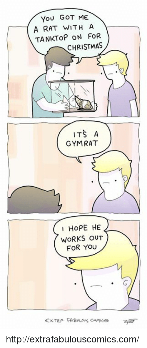 Christmas, Memes, and Http: You GOT ME  A RAT WITH A  TANKToP ON FOR  CHRISTMAS  ITS A  GYMRAT  IHOPE HE  WORKS oUT  FOR YOU http://extrafabulouscomics.com/
