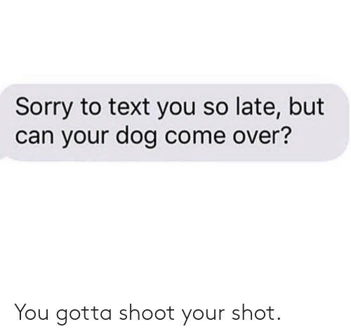 you gotta: You gotta shoot your shot.