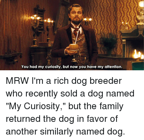 you had my curiosity but now you have my attention 22647012 🔥 25 best memes about you had my curiosity but now you have my