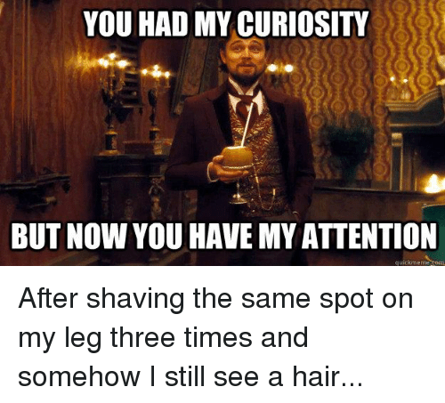 you had my curiosity but now you have my attention 2823774 🔥 25 best memes about you had my curiosity but now you have my