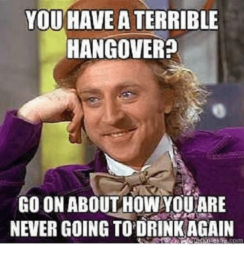 Drinking, Memes, and Hangover: YOU HAVE A TERRIBLE  HANGOVER?  GO ON ABOUT HOW YOU ARE  NEVER GOING TO DRINK AGAIN  nie!