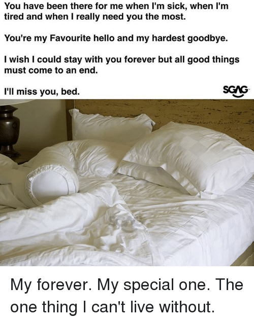 Hello, Memes, and Forever: You have been there for me when l'm sick, when l'm  tired and when I really need you the most.  You're my Favourite hello and my hardest goodbye.  I wish I could stay with you forever but all good things  must come to an end.  l'll miss you, bed. My forever. My special one. The one thing I can't live without.