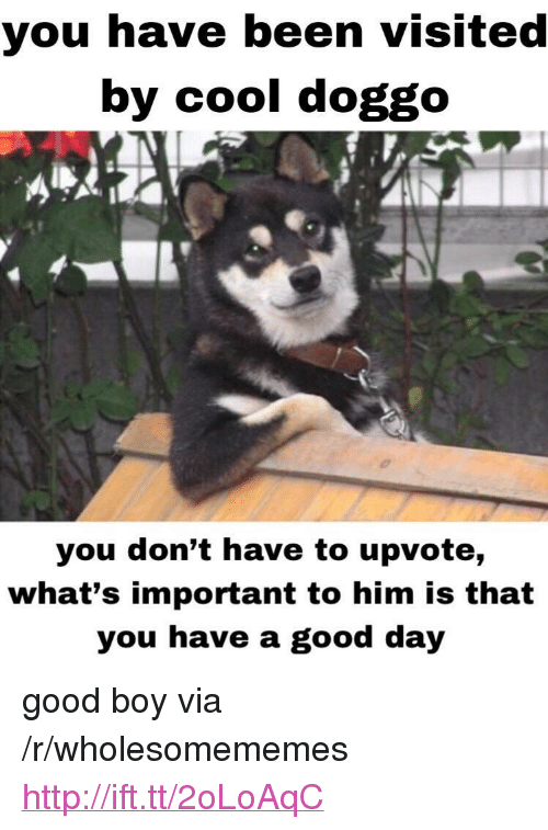 """Cool, Good, and Http: you have been visited  by cool doggo  you don't have to upvote,  what's important to him is that  you have a good day <p>good boy via /r/wholesomememes <a href=""""http://ift.tt/2oLoAqC"""">http://ift.tt/2oLoAqC</a></p>"""