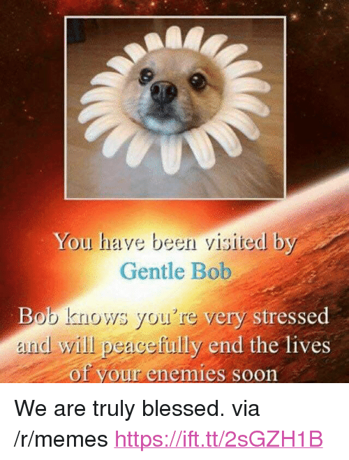 """Blessed, Memes, and Soon...: You have been visited by  Gentle Bob  Bob knows you're very  nd will peacefully end the lives  stresse  of your enemies soon <p>We are truly blessed. via /r/memes <a href=""""https://ift.tt/2sGZH1B"""">https://ift.tt/2sGZH1B</a></p>"""