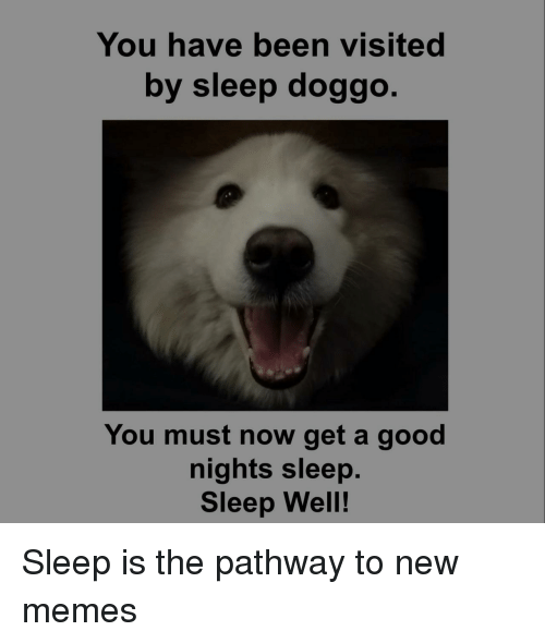 new memes: You have been visited  by sleep doggo  You must now get a good  nights sleep.  Sleep Well! Sleep is the pathway to new memes