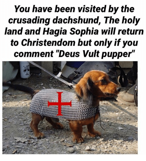 """deus vult: You have been visited by the  crusading dachshund, The holy  land and Hagia Sophia will return  to Christendom but only if you  comment """"Deus Vult pupper"""""""