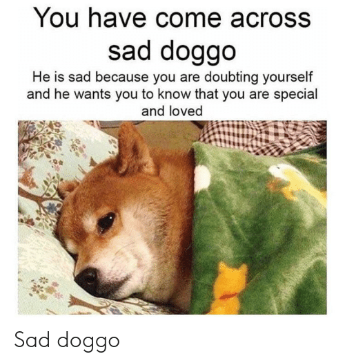 you are special: You have come across  sad doggo  He is sad because you are doubting yourself  and he wants you to know that you are special  and loved Sad doggo