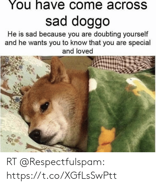 you are special: You have come across  sad doggo  He is sad because you are doubting yourself  and he wants you to know that you are special  and loved RT @Respectfulspam: https://t.co/XGfLsSwPtt