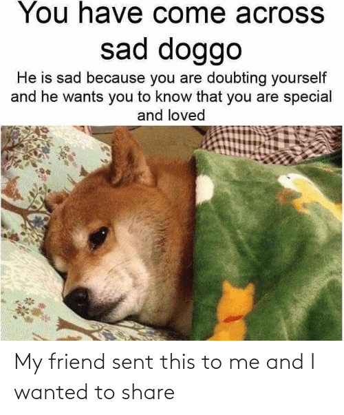 you are special: You have come acroSS  sad doggo  He is sad because you are doubting yourself  and he wants you to know that you are special  and loved My friend sent this to me and I wanted to share