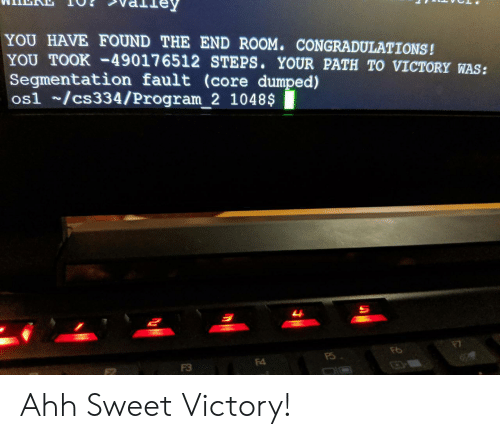 Path: YOU HAVE FOUND THE END ROOM. CONGRADULATIONS!  YOU TOOK-49017 6512 STEPS. YOUR PATH TO VICTORY WAS:  Segmentation fault (core dumped)  os1 /cs334/Program_2 1048$  म  F4  F3 Ahh Sweet Victory!
