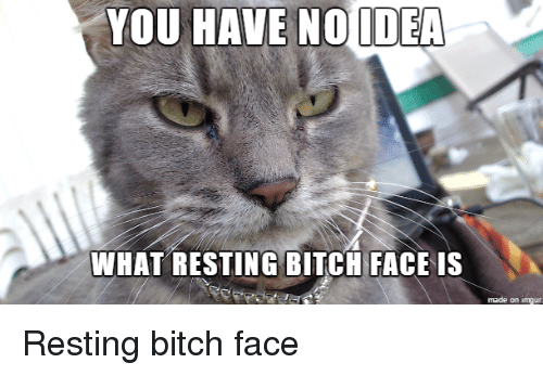 Imgur, Idea, and Ideas: YOU HAVE NO IDEA  WHAT RESTING BITCH FACE IS  made on imgur