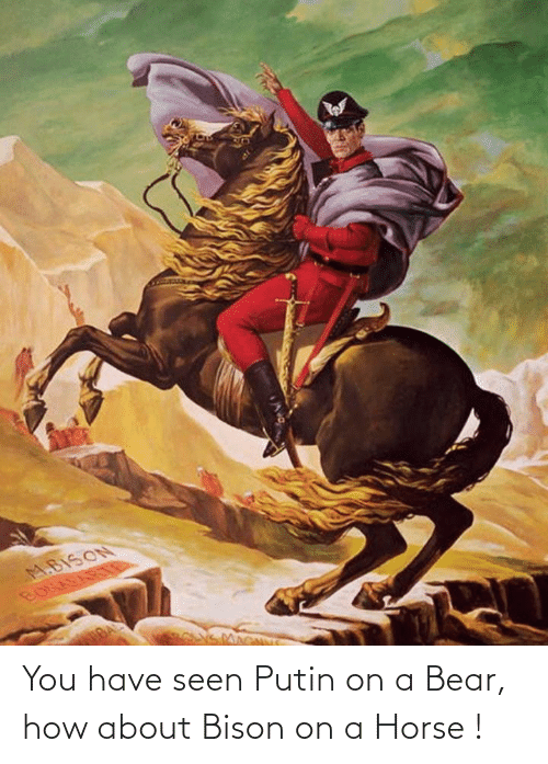 bison: You have seen Putin on a Bear, how about Bison on a Horse !