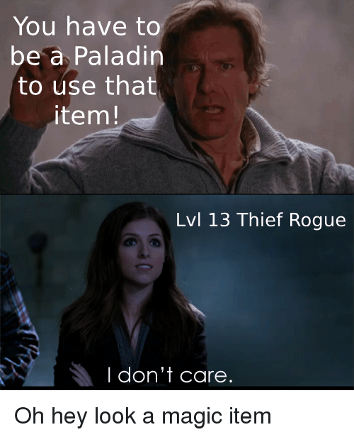 Paladin: You have to  be a Paladin  to use that  item!  Lvl 13 Thief Rogue  I don't care. Oh hey look a magic item