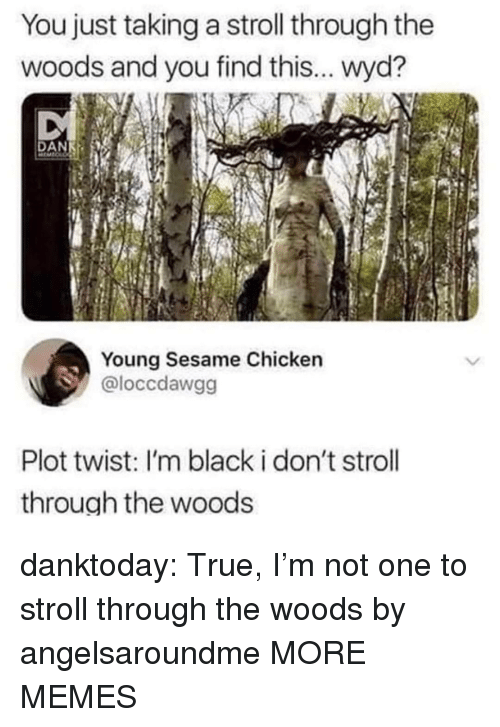 Im Black: You just taking a stroll through the  woods and you find this... wyd?  Young Sesame Chicken  @loccdawgg  Plot twist: I'm black i don't stroll  through the woods danktoday:  True, I'm not one to stroll through the woods by angelsaroundme MORE MEMES