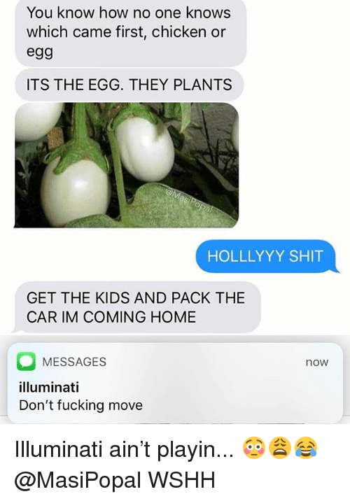 Fucking, Illuminati, and Memes: You know how no one knows  which came first, chicken or  egg  ITS THE EGG. THEY PLANTS  HOLLLYYY SHIT  GET THE KIDS AND PACK THE  CAR IM COMING HOME  MESSAGES  illuminati  Don't fucking move  now Illuminati ain't playin... 😳😩😂 @MasiPopal WSHH