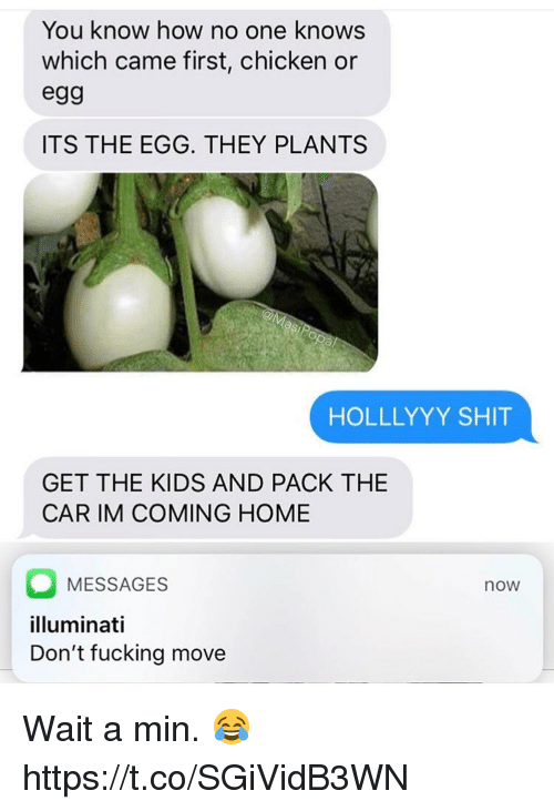 Fucking, Illuminati, and Memes: You know how no one knows  which came first, chicken or  eg9  ITS THE EGG. THEY PLANTS  HOLLLYYY SHIT  GET THE KIDS AND PACK THE  CAR IM COMING HOME  MESSAGES  illuminati  Don't fucking move  now Wait a min. 😂 https://t.co/SGiVidB3WN