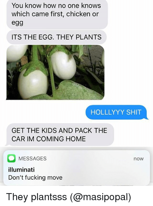 Fucking, Illuminati, and Memes: You know how no one knows  which came first, chicken or  egg  ITS THE EGG. THEY PLANTS  HOLLLYYY SHIT  GET THE KIDS AND PACK THE  CAR IM COMING HOME  MESSAGES  illuminati  Don't fucking move  now They plantsss (@masipopal)
