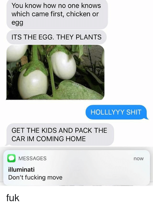 Fucking, Illuminati, and Memes: You know how no one knows  which came first, chicken or  egg  ITS THE EGG. THEY PLANTS  HOLLLYYY SHIT  GET THE KIDS AND PACK THE  CAR IM COMING HOME  MESSAGES  illuminati  Don't fucking move  now fuk