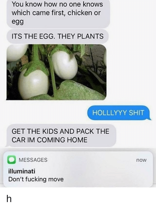 Fucking, Illuminati, and Shit: You know how no one knows  which came first, chicken or  egg  ITS THE EGG. THEY PLANTS  HOLLLYYY SHIT  GET THE KIDS AND PACK THE  CAR IM COMING HOME  MESSAGES  illuminati  Don't fucking move  now h
