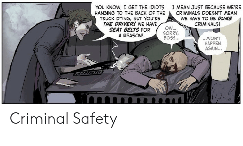 You Know I: YOU KNOW, I GET THE IDIOTS  HANGING TO THE BACK OF THE  TRUCK DYING, BUT YOU'RE  THE DRIVER! WE HAVE  SEAT BELTS FOR  A REASON!  I MEAN JUST BECAUSE WE'RE  CRIMINALS DOESN'T MEAN  WE HAVE TO BE DUMB  CRIMINALS!  OW...  SORRY,  BOSS...  ...WON'T  HAPPEN  AGAIN...  imn Criminal Safety