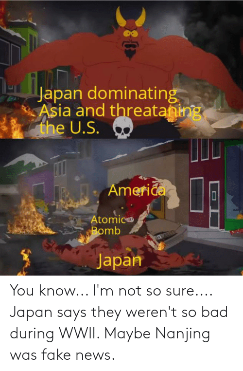 Fake News: You know... I'm not so sure.... Japan says they weren't so bad during WWII. Maybe Nanjing was fake news.