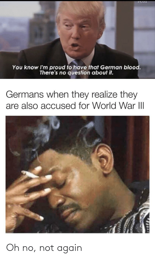 german: You know I'm proud to have that German blood.  There's no question about it.  Germans when they realize they  are also accused for World War III  1714 Oh no, not again