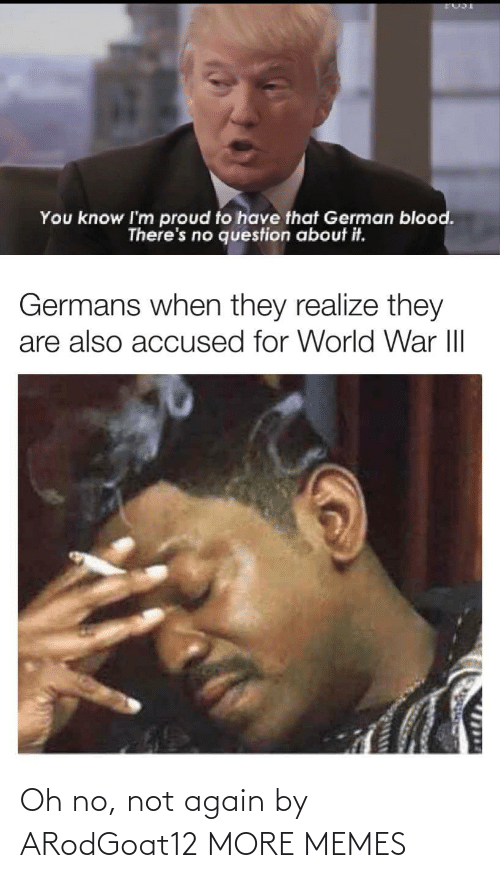 german: You know I'm proud to have that German blood.  There's no question about it.  Germans when they realize they  are also accused for World War III  1714 Oh no, not again by ARodGoat12 MORE MEMES