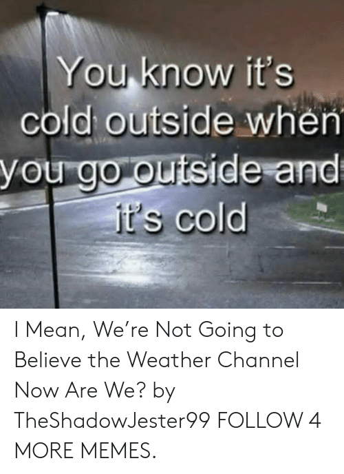 The Weather Channel: You know it's  cold outside when  you go outside and  it's cold I Mean, We're Not Going to Believe the Weather Channel Now Are We? by TheShadowJester99 FOLLOW 4 MORE MEMES.