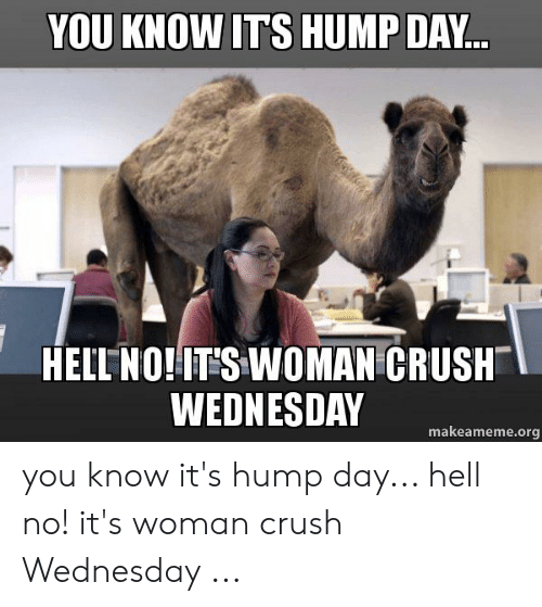 Crush Wednesday: YOU KNOW ITS HUMP DAY..  HELL NO!IT S WOMAN CRUSH  WEDNESDAY  makeameme.org you know it's hump day... hell no! it's woman crush Wednesday ...