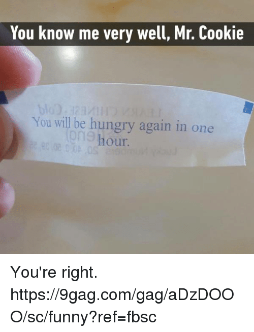 9gag, Dank, and Funny: You know me very well, Mr. Cookie  You will be hungry again in one  hour You're right.  https://9gag.com/gag/aDzDOOO/sc/funny?ref=fbsc