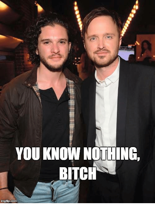 Bitch and Game of Thrones: YOU KNOW NOTHING.  BITCH  imgfip.com