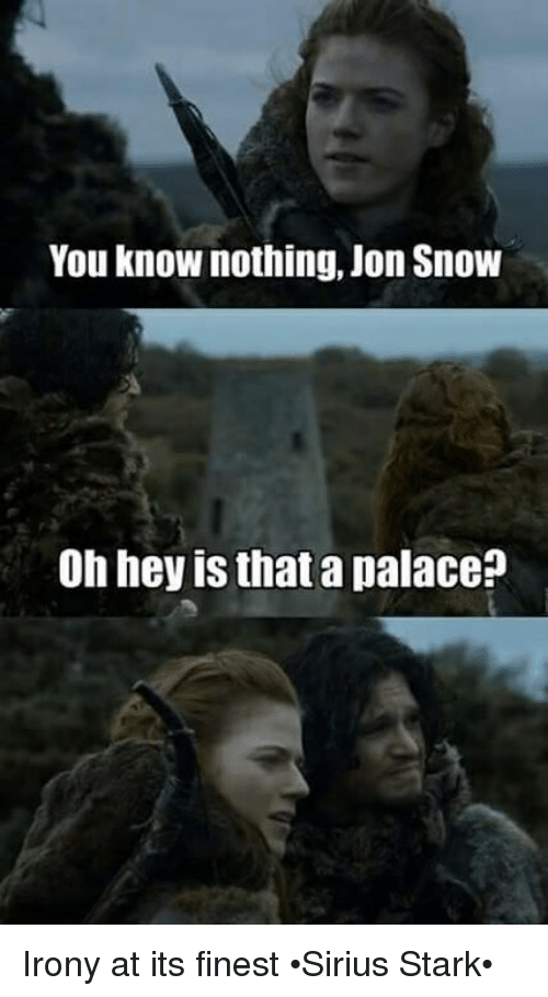 you know nothing jon snow: You know nothing, Jon Snow  Oh hey is that a palace? Irony at its finest •Sirius Stark•