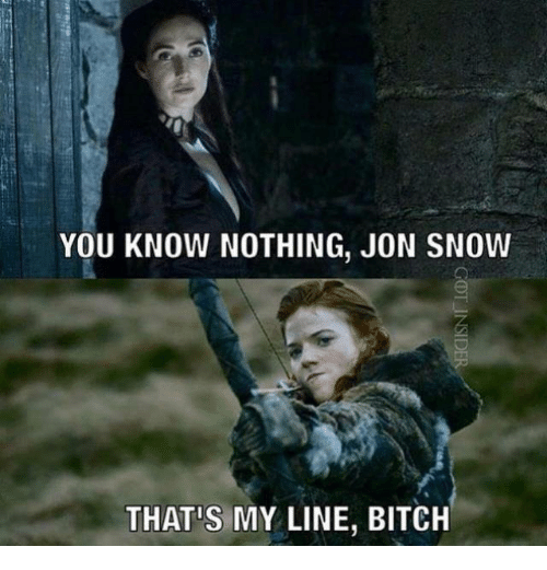 Memes, Jon Snow, and Snow: YOU KNOW NOTHING, JON SNOW  THAT MY LINE, BITCH