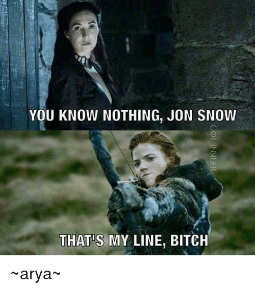 Bitch, Memes, and Jon Snow: YOU KNOW NOTHING, JON SNOW  THAT S MY LINE, BITCH ~arya~